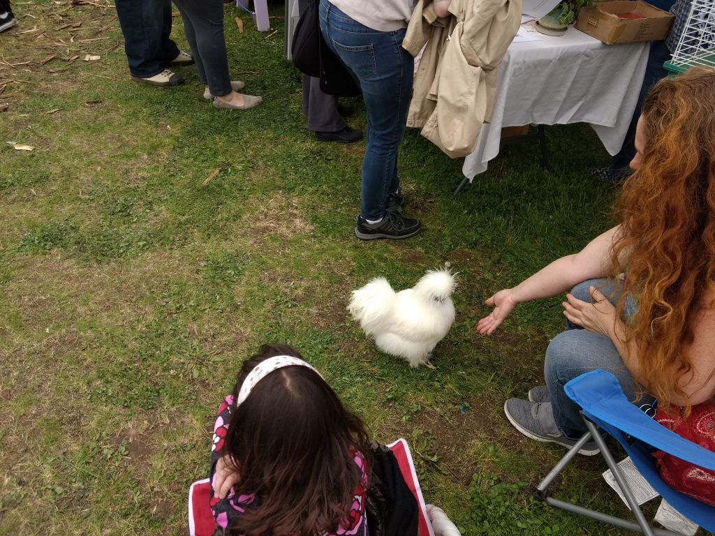 Chicken at the Westside Spring Celebration